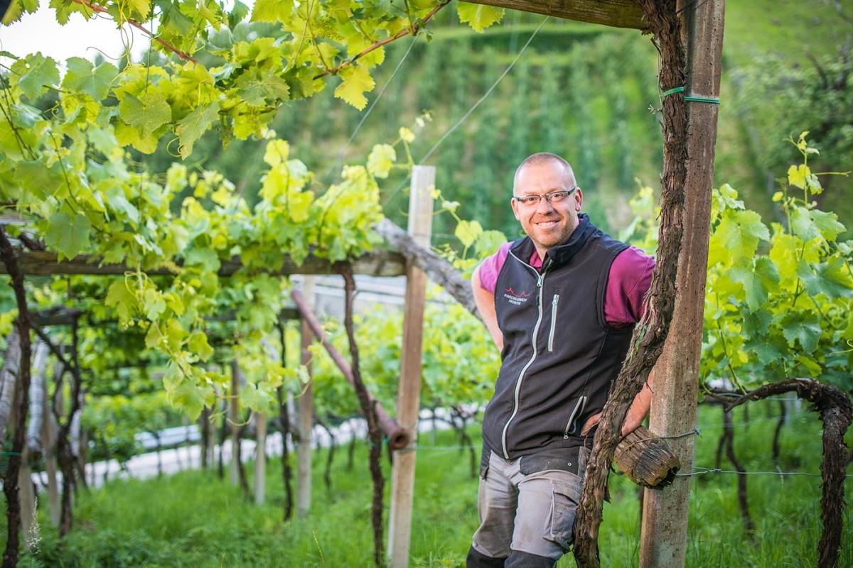 Weingut Pardellerhof
