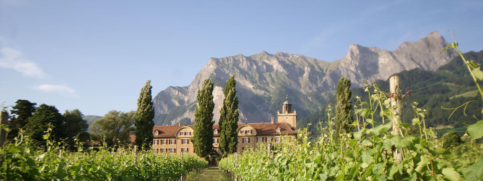 Schloss Salenegg